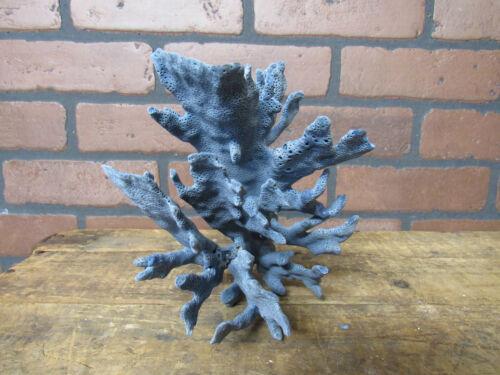 "Natural Genuine Light Blue Ridge Coral Home Decor 8"" x 5.5"" x6.5"" BL-530"