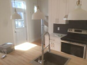 5 bedrooms MIle End/Outremont (completelly renovated)
