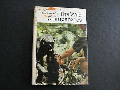 My Friends The Wild Chimpanzees By Baroness Jane Van Lawick Goodall