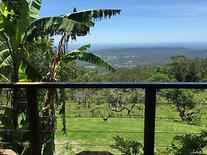 1 bedroom Timber Cabin for rent $220.00 a week on Mt Tamborine Nerang Gold Coast West Preview