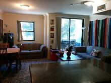 """Share sunny apartment in fantastically situated """"University Hall"""" Glebe Inner Sydney Preview"""