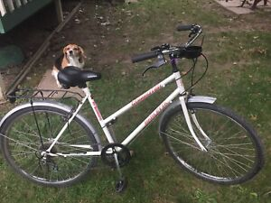 6 Speed womens Bicycle