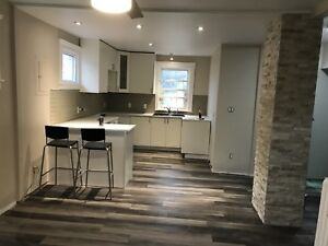 Completely renovated high end 1 bed apt