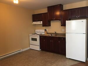 Two bedroom walk-in apartment for RENT in Clarenville