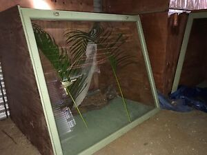 Reptile Cages Nambour Maroochydore Area Preview