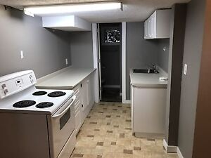 One Bedroom Basement Suite $750