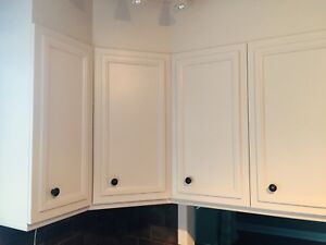 Painted wood cabinets white