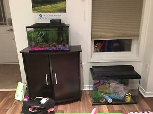 two fish tank and fish with stand for sale
