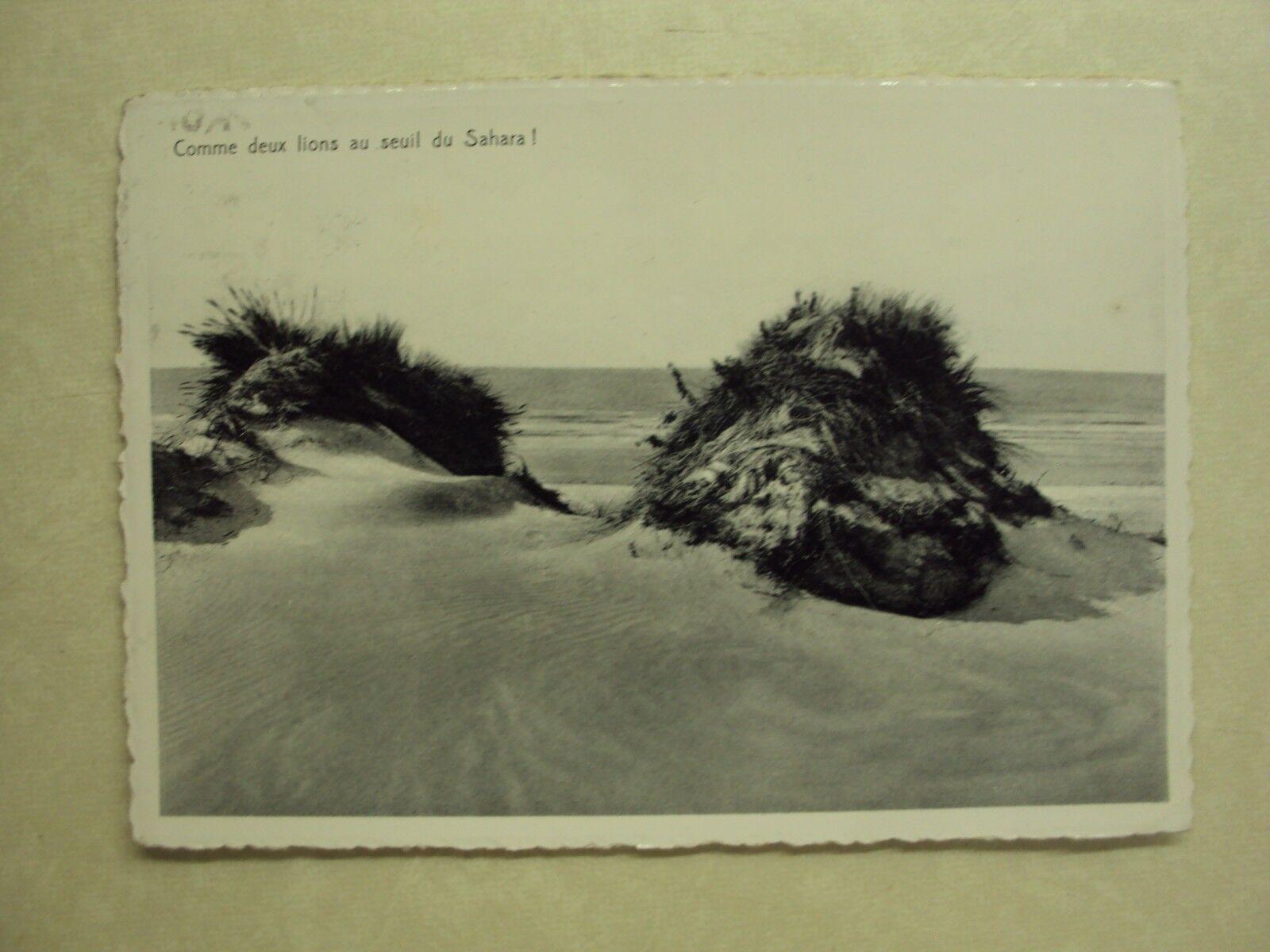 28419 - KOKSIJDE - ST. IDESBALD - COMME DEUX LIONS AU SEUL - ZIE 2 FOTO'S