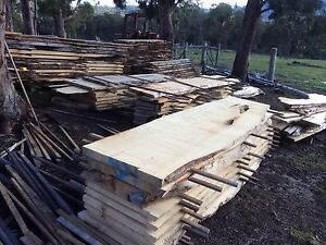 Huon pine slabs, boards, ect.. Cut to order, Reasonable prices.. Geeveston Huon Valley Preview