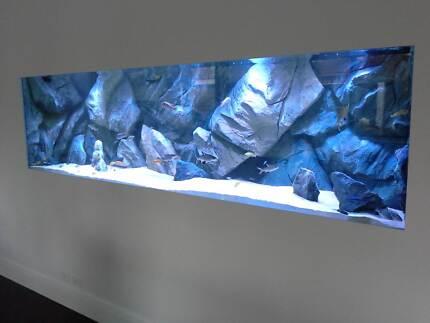 ** Elite Fish ** Custom Aquarium Fish Tanks Shrimp racks marine Mount Barker Mount Barker Area Preview