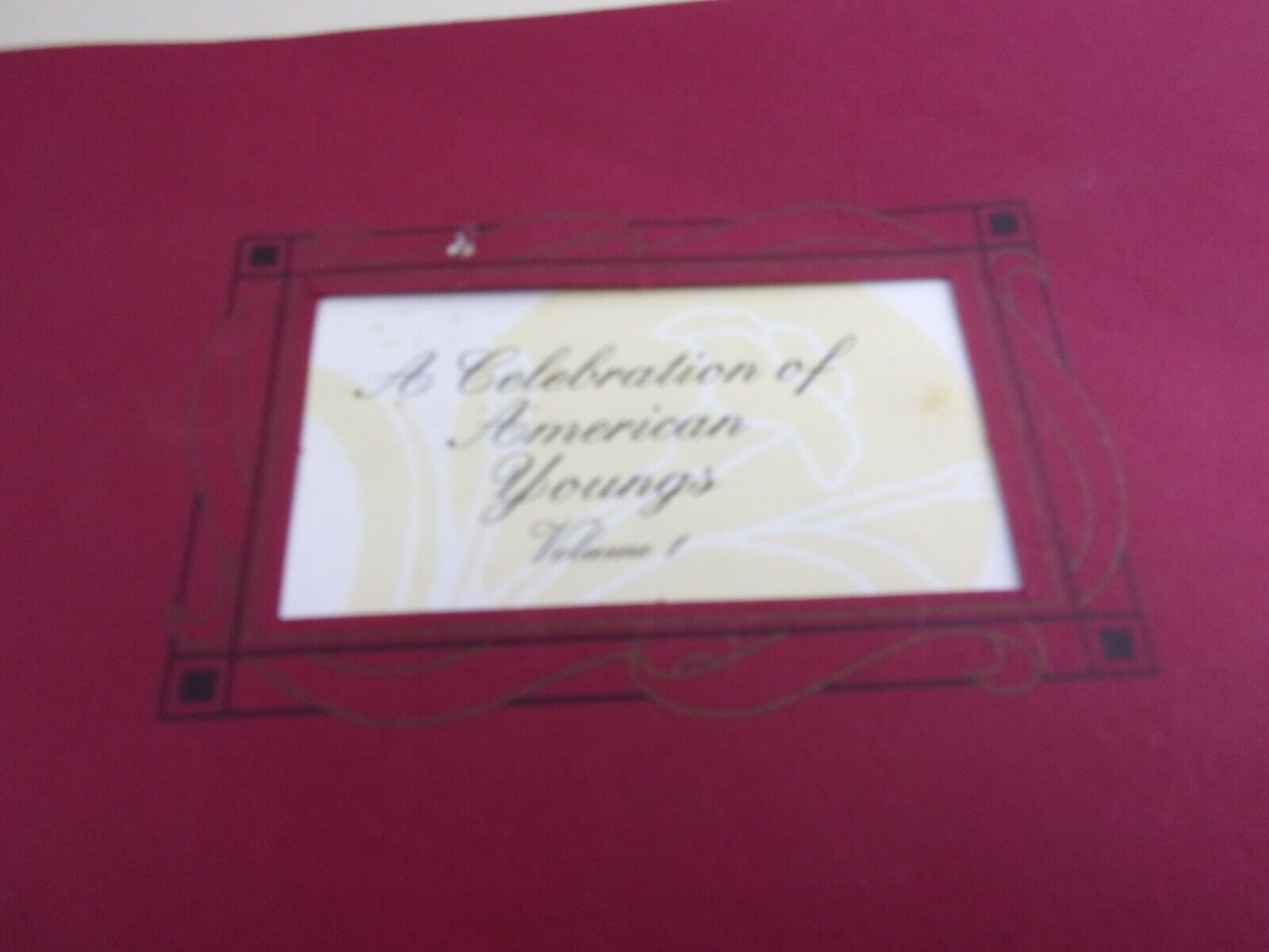 Young Family History Genealogy 1998 By Halberts Family Tree Research - $60.47