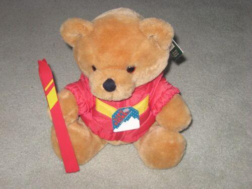 "Vintage 10"" Plush Bear Ski Lift Ticket Bear Mountain Downhill Teddy R Dakin Rare"