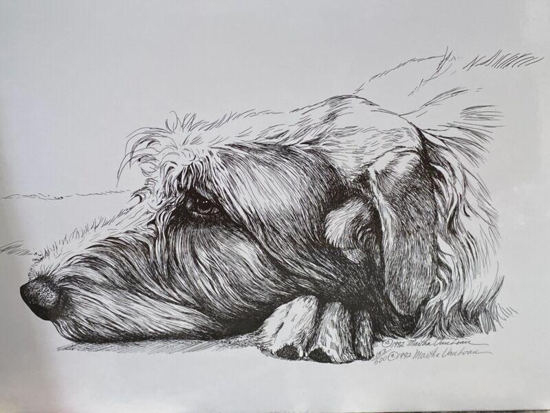 Irish Wolfhound Head Study Ltd Ed 11x17 Print By Van Loan