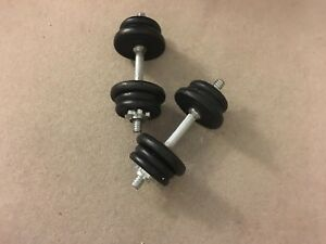 Adjustable dumbell weights