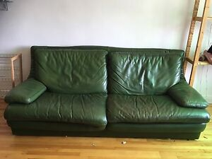 Buffalo leather couch - forest green