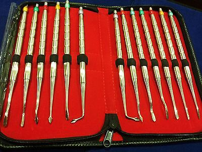 Set Of 13 Pcs Luxating Pdl Dental Root Tip Extraction Elevators Instruments