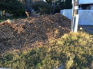 Free Mulch Westminster Stirling Area Preview