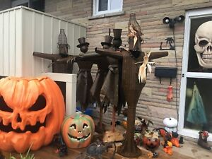 Scarecrow /Tin and lots of pumpkins