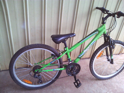 "18 speed 24"" mountain bike"