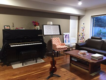 $20 Violin Lessons for very beginners to intermediate