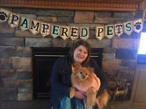 Pampered Pets Sitting and Walking services