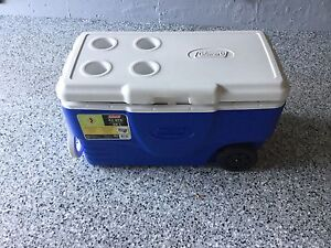 For Sale:  Large Picnic Cooler