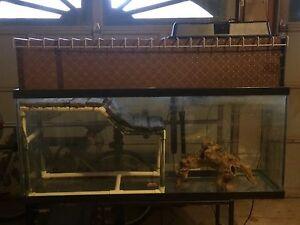 80G Aquarium Tank with Full Set Up