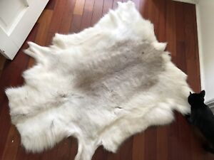 Finnish reindeer hide / rug / wall decor