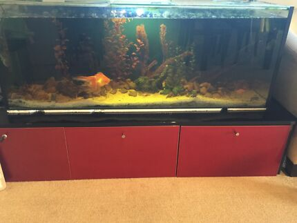4 foot fish tank with stand filter,heater&light Wollongong 2500 Wollongong Area Preview