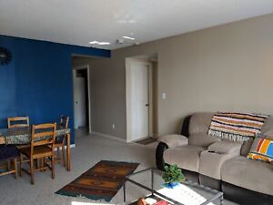 Furnished One Bedroom Short Term Sublet for the month of March