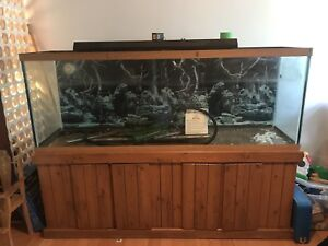 150 gallons (Nego)
