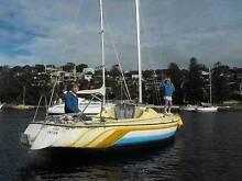 Crossfire 20 single hull sailboat Balgowlah Manly Area Preview
