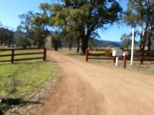 Horse agistment on 116 acres in the Upper Hunter per week  - Martindale Muswellbrook Area Preview