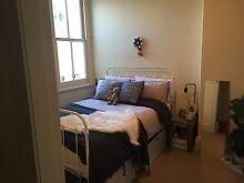 Light and Bright Room in Paddington Terrace Short Term $290 Paddington Eastern Suburbs Preview