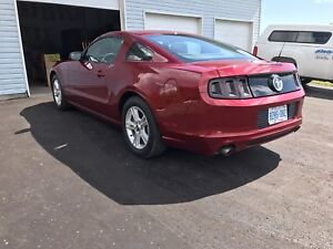 2014 Mustang for sale