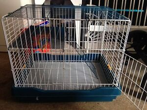 Rat/small rodent cage