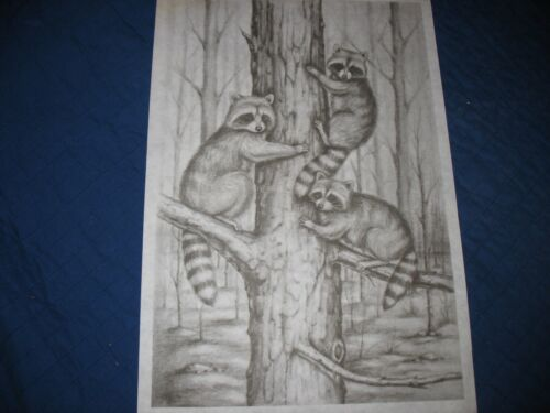 * TRI CHEM 2966 RACCOONS IN THE FOREST Picture to paint TRICHEM
