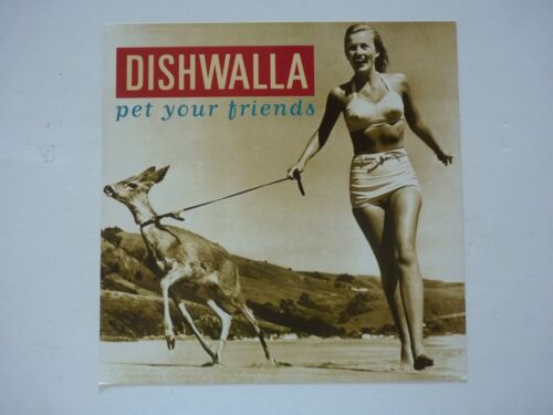 Dishwalla Pet Your Friends 1995 LP Record Photo Flat 12x12 Poster