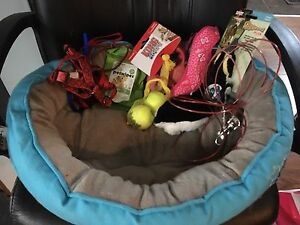Dog bed/toys