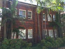 Bondi Beachside Apartment with Large Double Bedroom Bondi Beach Eastern Suburbs Preview
