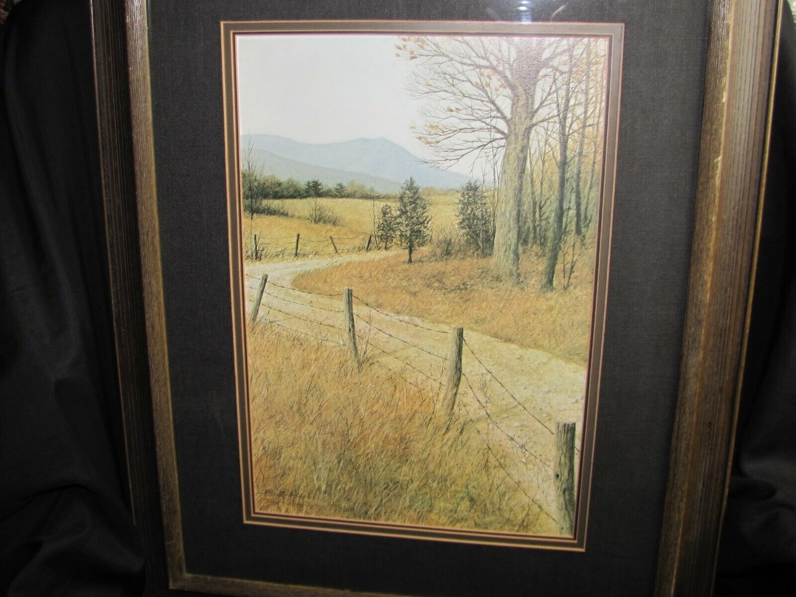 DON RINGSTROM COUNTRY ROADS SIGNED LIMITED EDITION PRINT - $39.99
