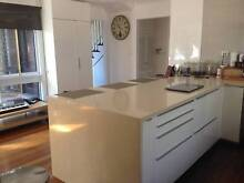 RAL Mantenance Handy Man Home Renovation and Repairs Dingley Village Kingston Area Preview