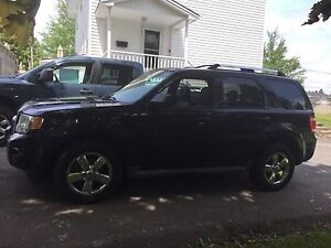 2009 Ford Escape xlt SUV, Crossover;5995.00