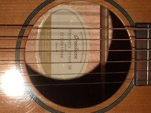 Breedlove Discovery Dread SB Guitar
