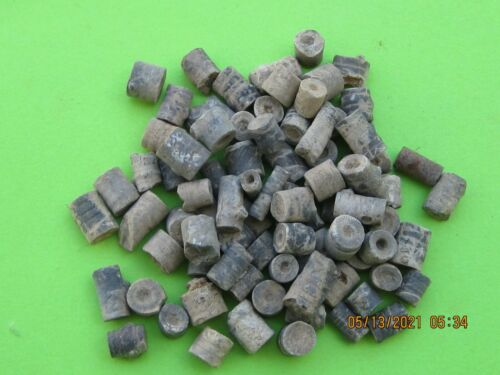 WHOLESALE LOT OF 100 FOSSIL CRINOID STEMS