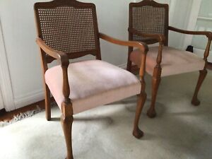 Chairs solid timber with cane backs and upholstered seats