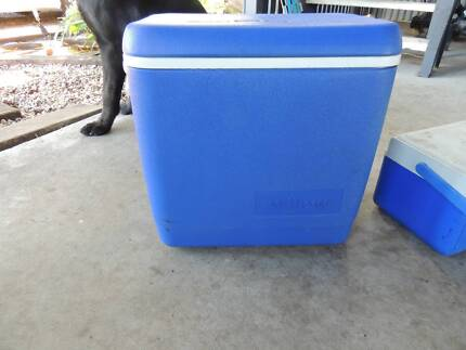 1 med esky and 1 small esky both great condition $35 for both South Mackay Mackay City Preview