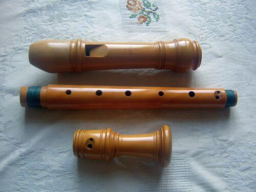 Wooden Moeck Rottenburgh 339 Alto / Treble Recorder, Baroque, Boxwood