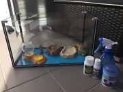 Small hermit crab fish tank with accessories  Maroubra Eastern Suburbs Preview